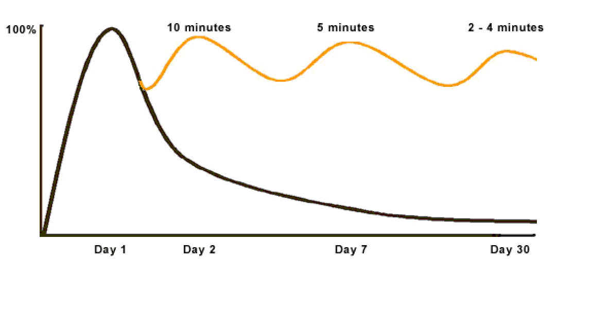 http://www.thepolyglotdream.com/wp-content/uploads/2012/04/forgetting-curve2.png